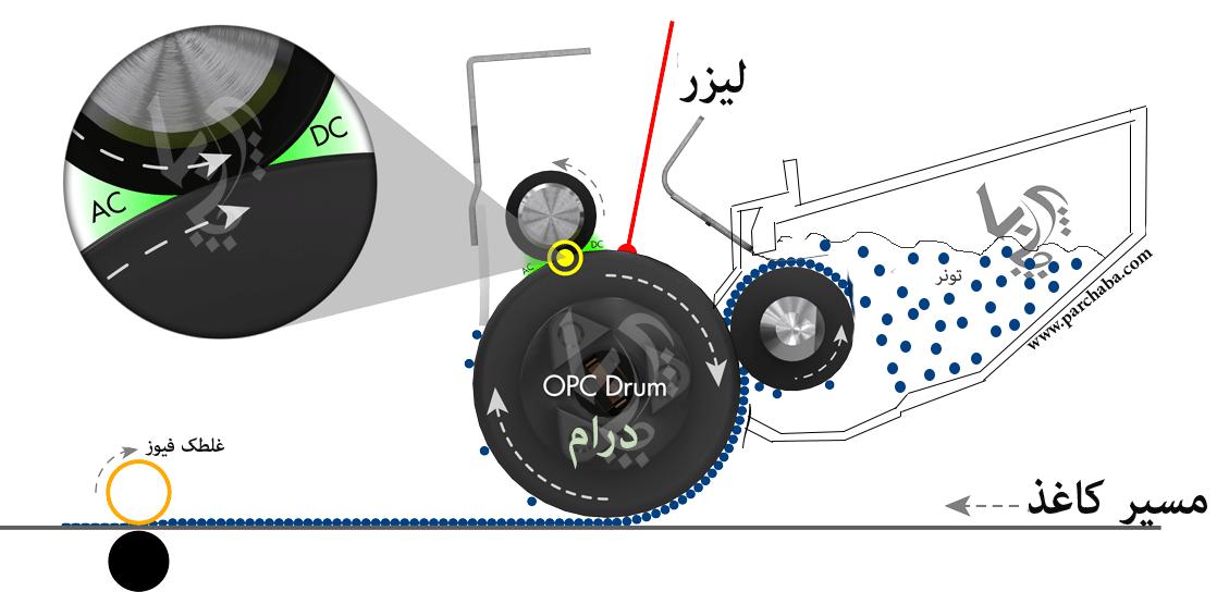 نمای نزدیک از تعاملات درام OPC Drum و فوم رولرPCR